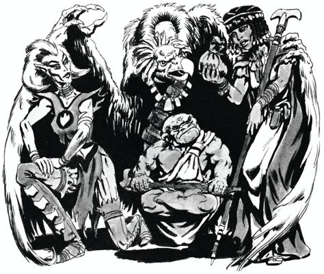 19. Aarakocra 1995 - Dark Sun Campaign Setting Expanded and Revised A.png