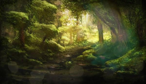 Forest II.jpg
