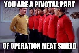 meatshield.jpg