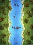 ForestRiverPublicJPG.jpg