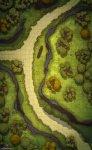 ForestPath3Public.jpg