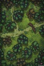 ForestPathVol6Public.jpg